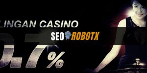 Jenis Jenis Bonus Situs Judi Casino